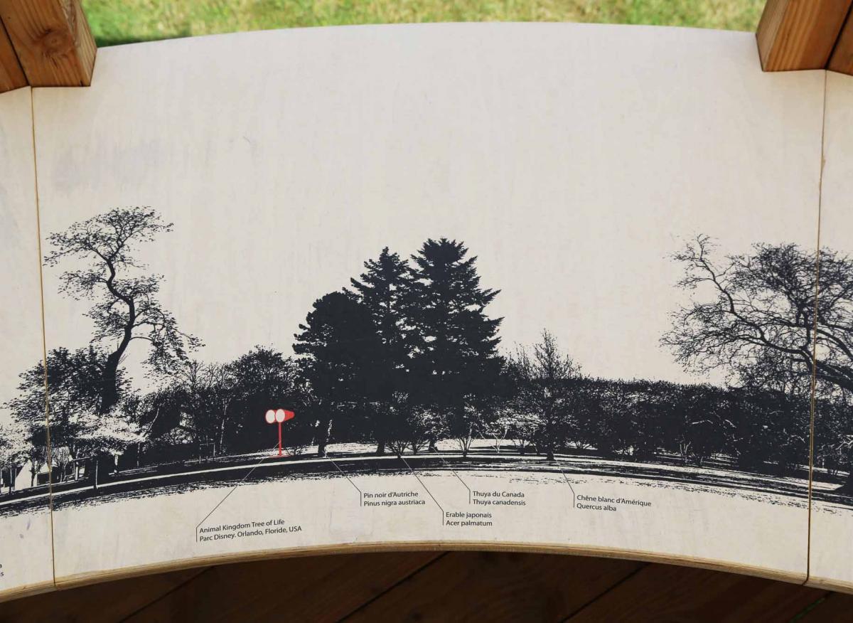 Détail de le table de lecture du paysage