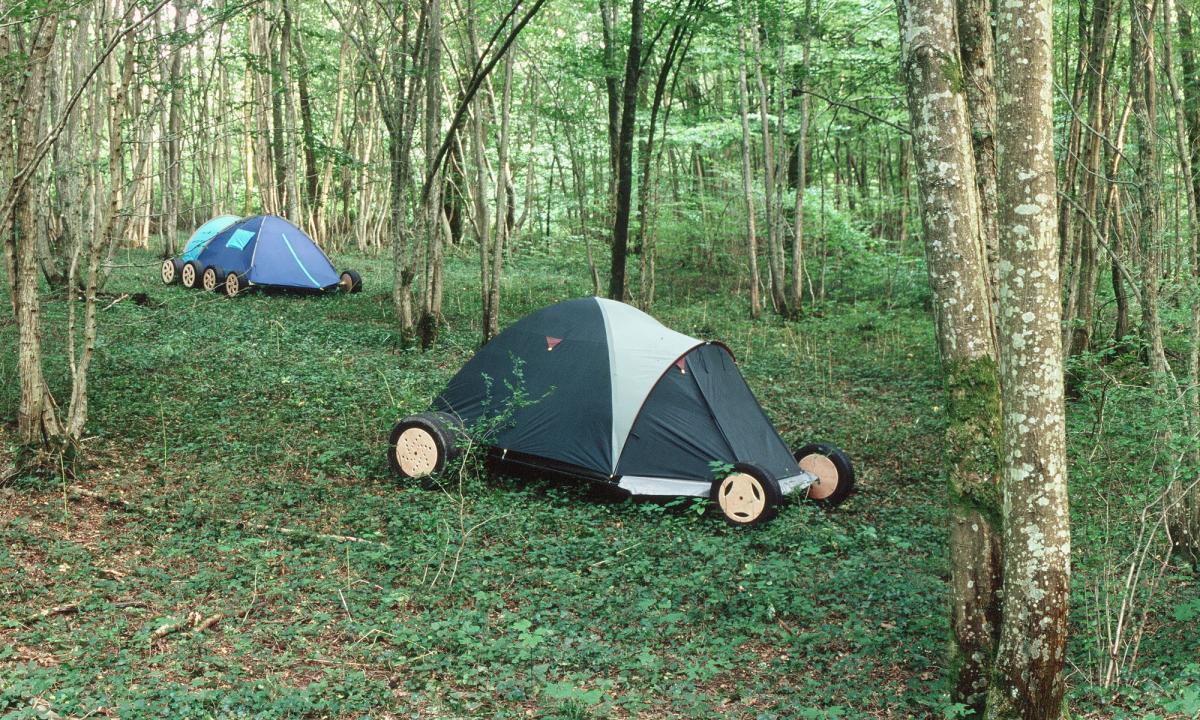 Lever de camps. 2007