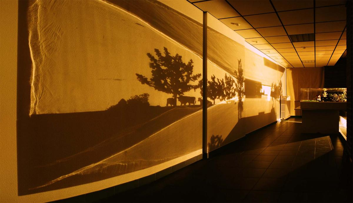 Vue de l'installation Zootrope